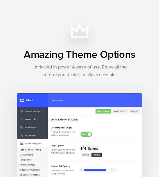 theme options